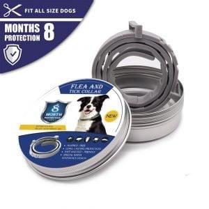 Coleira para Cães e Gatos Anti Pulgas Carrapatos e Mosquitos FreePet®