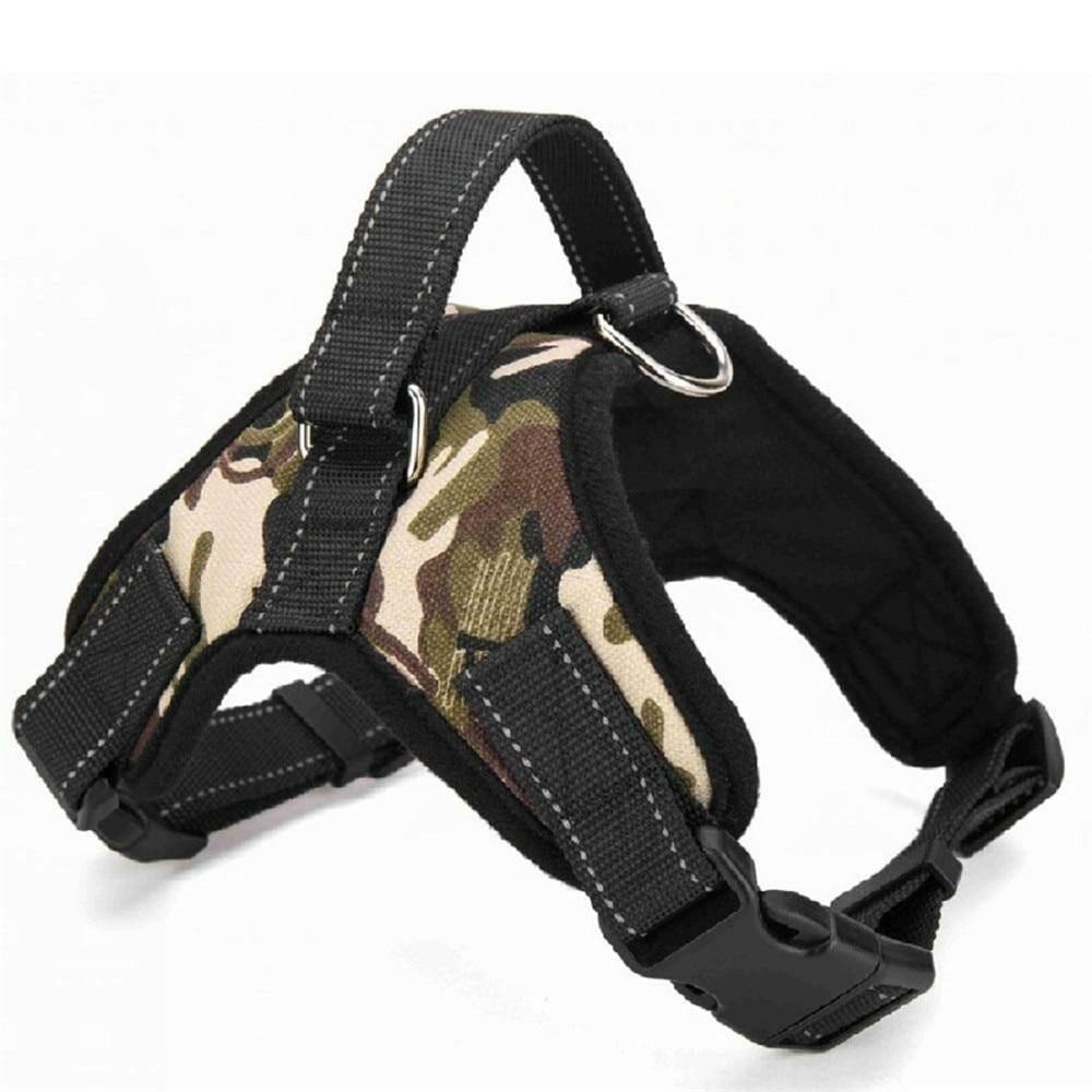 14 175 camouflage 5 100014064 5eaa8d17 c5dd 48e7 b6f2 2809beb257e9.jpg