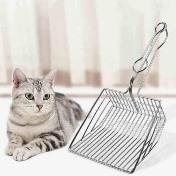 pazinha cat toilet 2.jpg