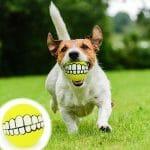 next deal shop funny teeth design dog ball 0.jpg