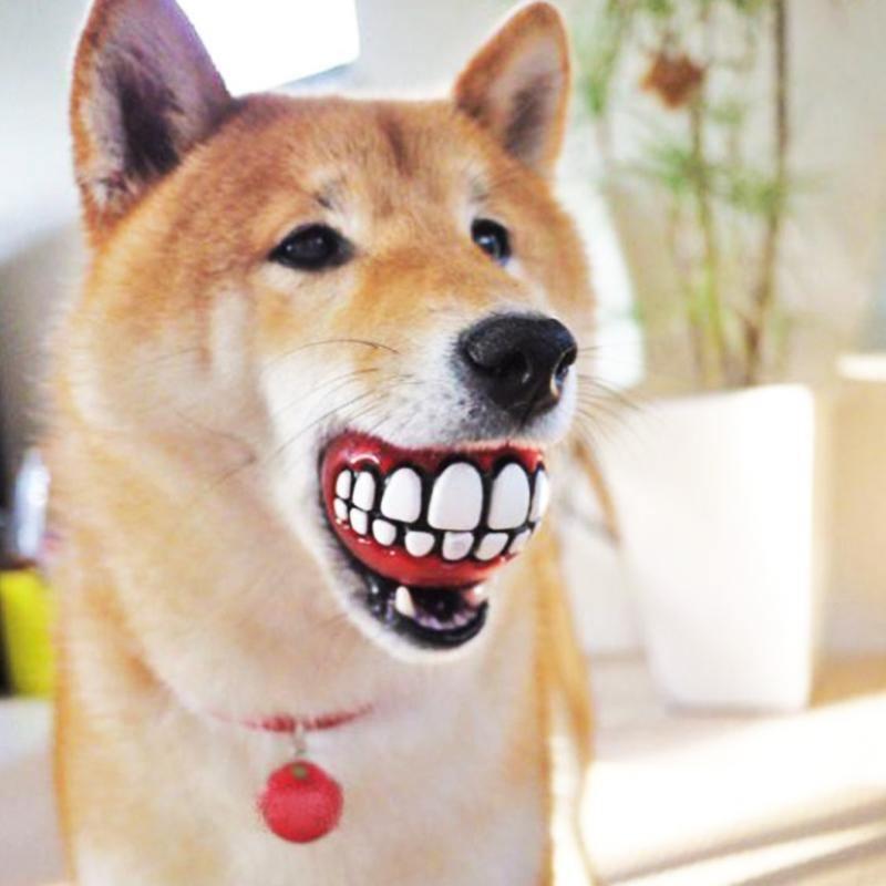 next deal shop funny teeth design dog ball 5.jpg
